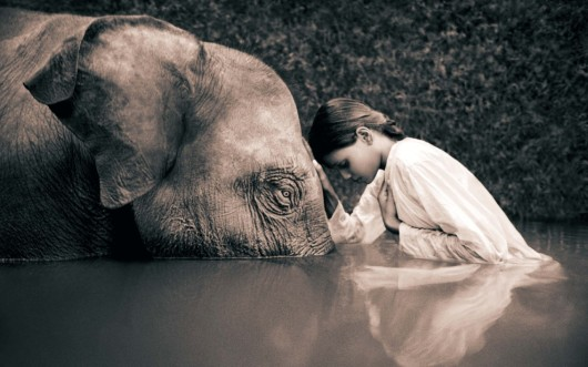 sepia_elephants_children_gregory_colbert_ashes_and_snow_1280x800_61231