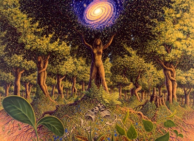 TREE-INCARNATION-ssp
