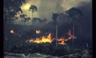 a-fierce-green-fire-movie-image-4-600x360